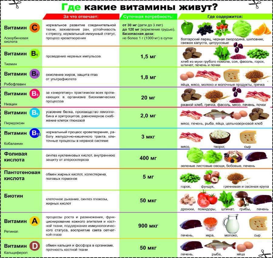 Витамин е: в каких продуктах содержится, список продуктов, суточная норма и признаки дефицита токоферола