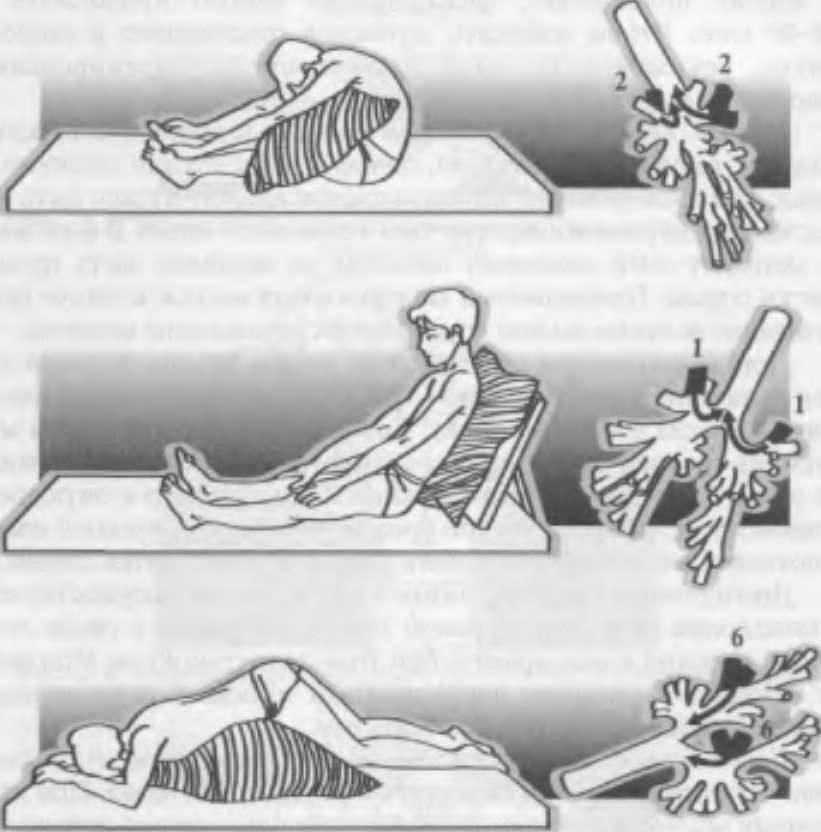 Дренажный массаж для детей при кашле