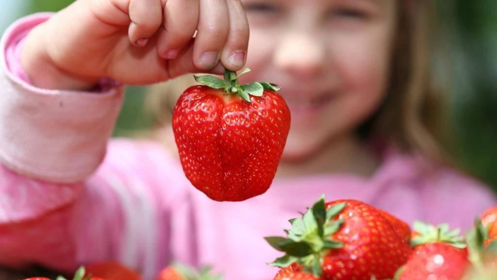 Аллергия у детей на клубнику как лечить