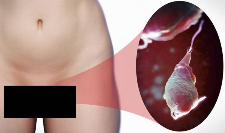 Глисты при беременности: что делать, как избавится, симптомы лечение