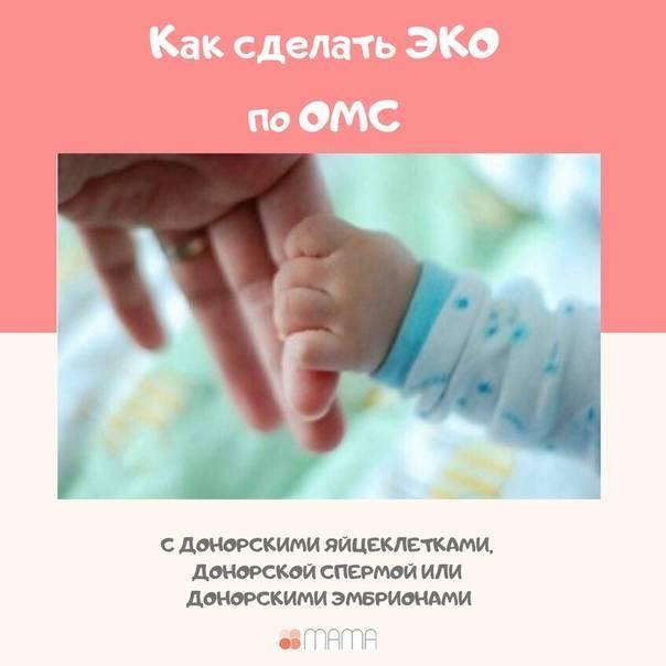 Эко с донорскими эмбрионами