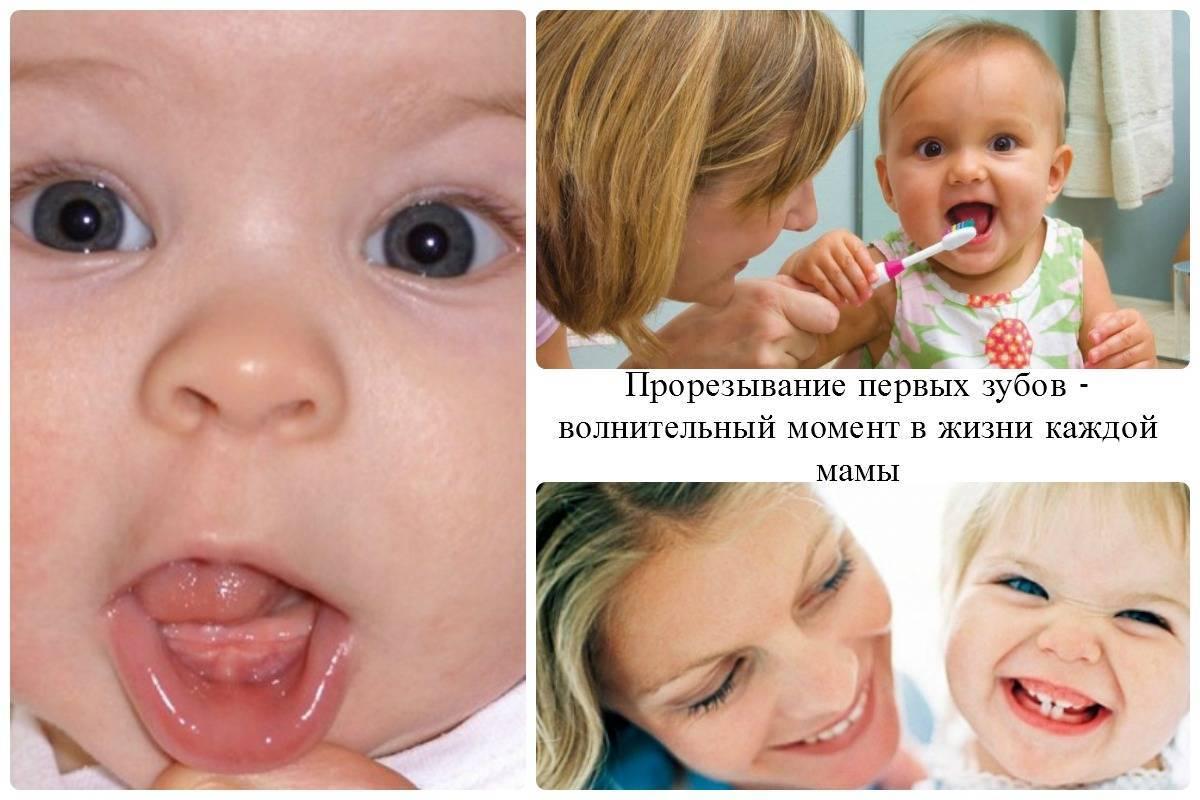 Температура при прорезывании зубов у детей.