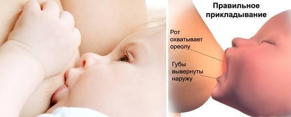 Все о вскармливании малыша - как наладить грудное вскармливание - первые дни грудного вскармливания