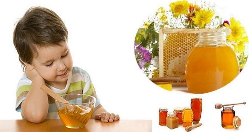 С какого возраста можно давать ребенку мед: польза, со скольки лет лучше давать