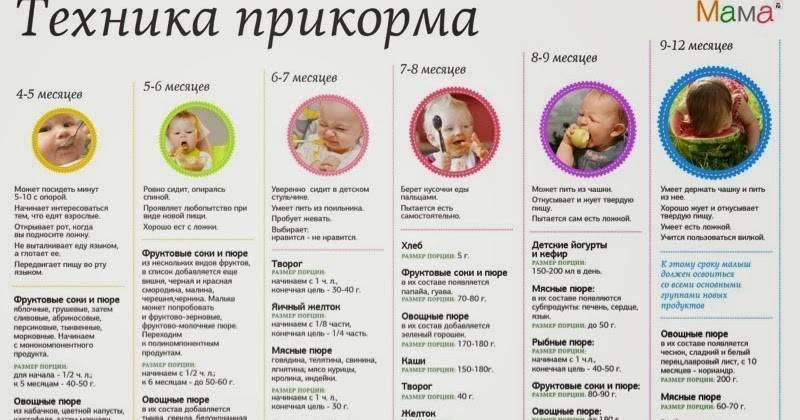 Первый прикорм ребенка грушевым пюре