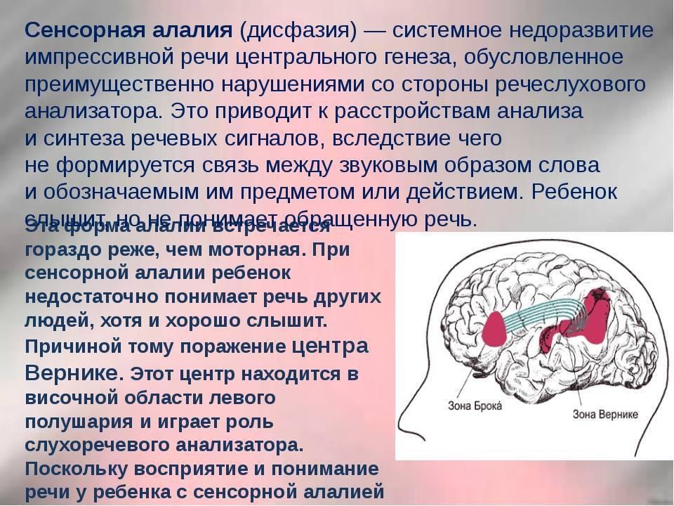 Основные признаки, диагностика и лечение сенсорной алалии