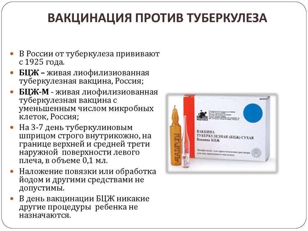Противопоказания к бцж новорожденным в роддоме и повторной прививки в старшем возрасте