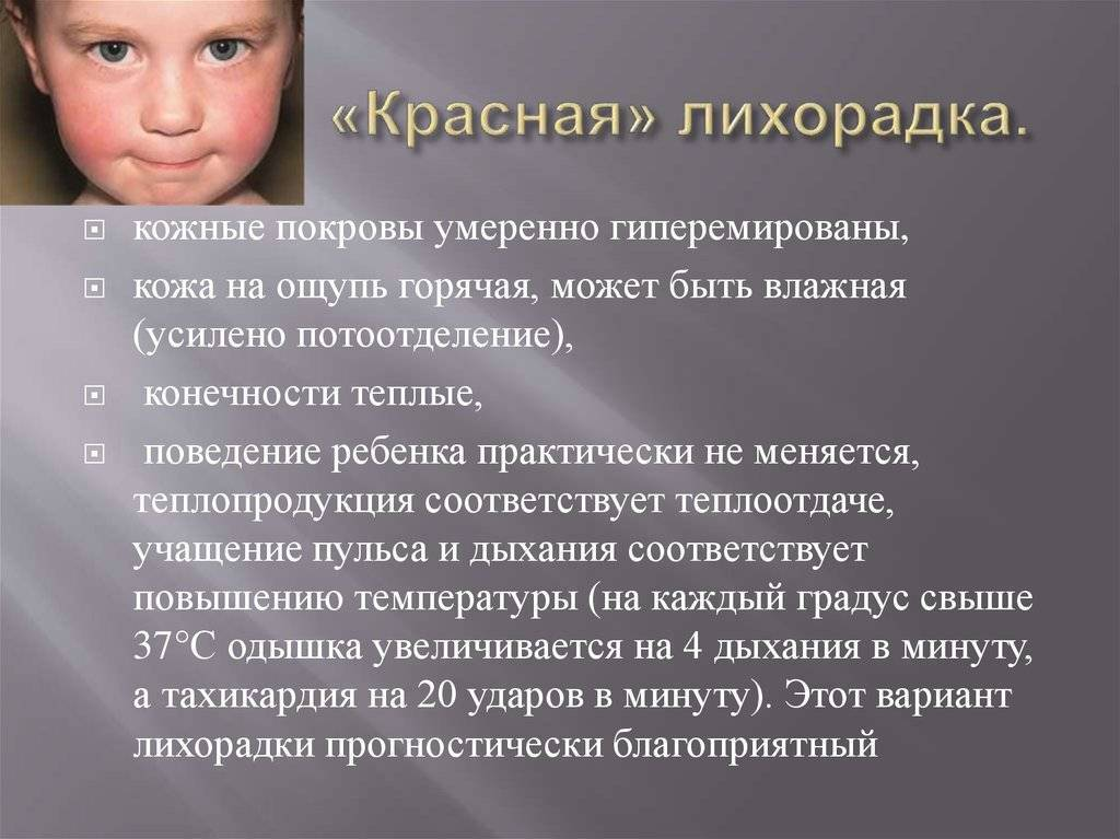 Белая лихорадка: как проявляется, чем опасна и что делать? лихорадка у детей: виды и лечение белая лихорадка у ребенка что делать.