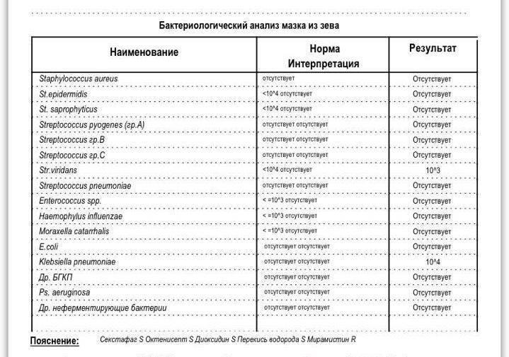 Стрептококковая инфекция у детей (60 фото): симптомы и лечение инфекции в горле, на коже и в носу, при ангине и пневмонии