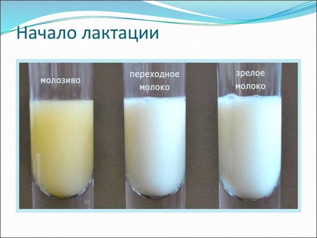 Что сделать, чтобы пропало грудное молоко?