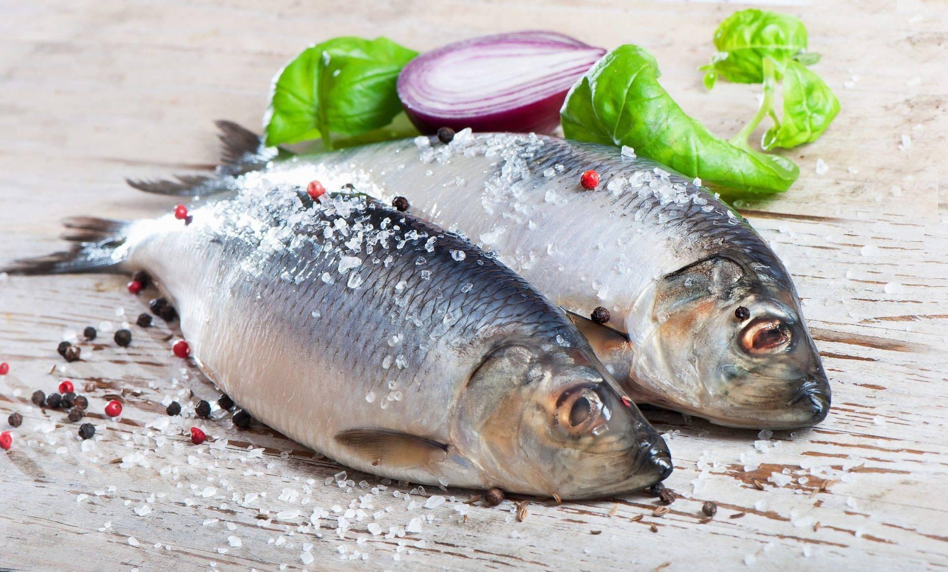 Рыба при грудном вскармливании: польза и опасность