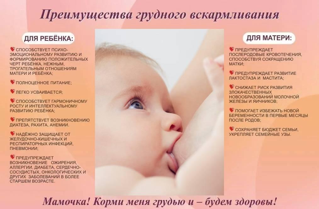 ✅ что делать кормящей маме при простуде и можно ли кормить ребенка грудью во время болезни? как организовать грудное вскармливание: рекомендации консультантов и советы кормящих мам - mariya-timohina.ru