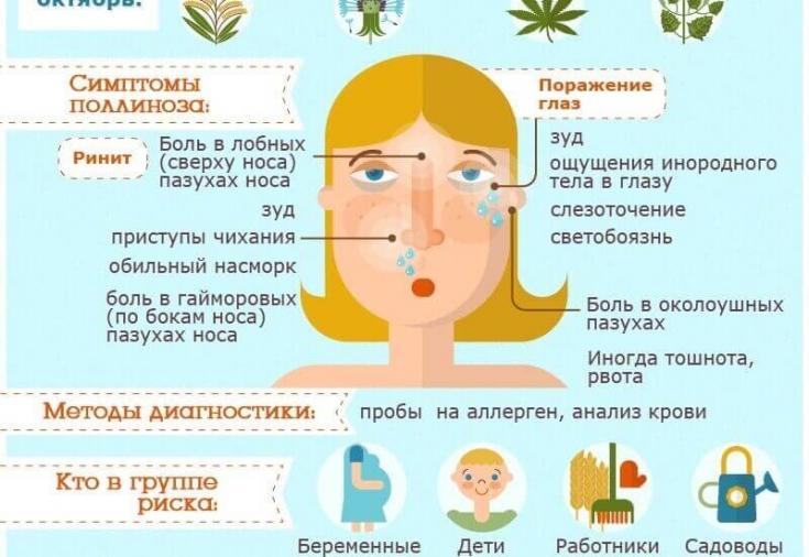 Как лечить аллергию на пыльцу • аллергия и аллергические реакции