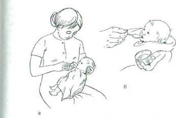 Кормление ребенка(детей) до года. сестринский процесс, уход. — медицина. сестринское дело.