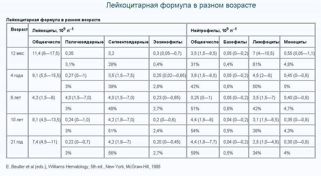 Норма лимфоцитов в крови у ребенка по возрасту в таблице