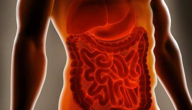 Гипомоторная дискинезия толстой кишки, ее проявления и методы лечения