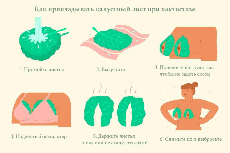 Как применять капустный лист для лечения суставов