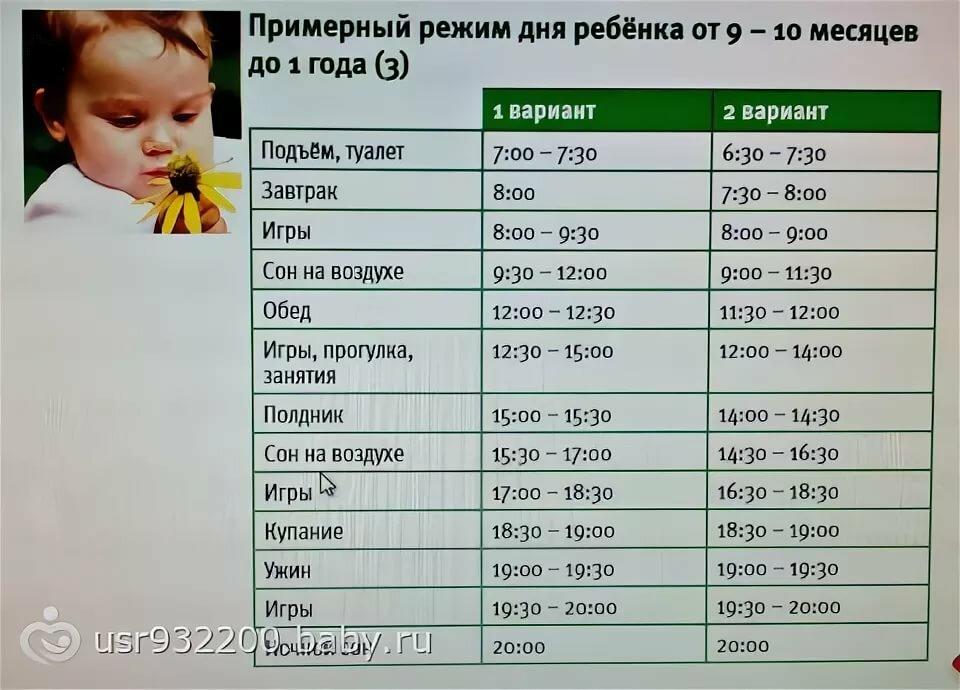 Режим дня ребенка в 1 год (в 12 месяцев)