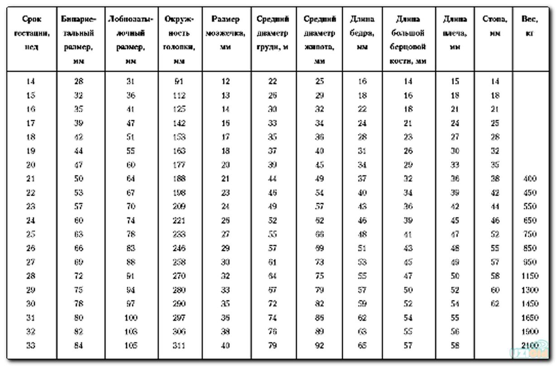 Фетометрия плода по неделям таблица калькулятор