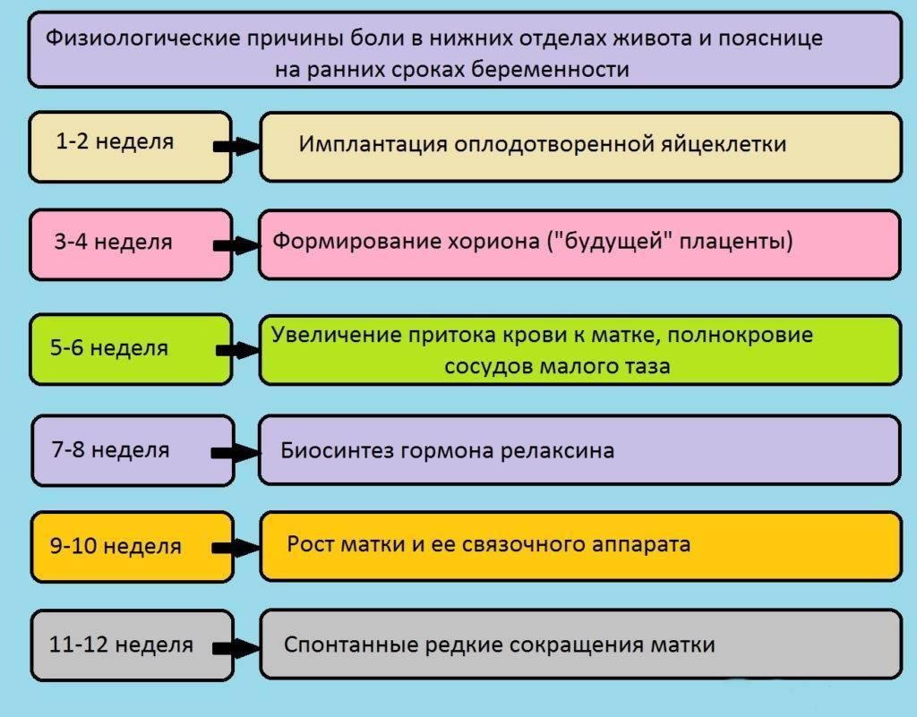 По какой причине колит внизу живота при беременности? | vseproberemennost.ru