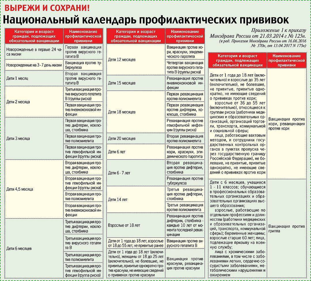 Вакцина от гепатита в (б): виды, противопоказания, реакции