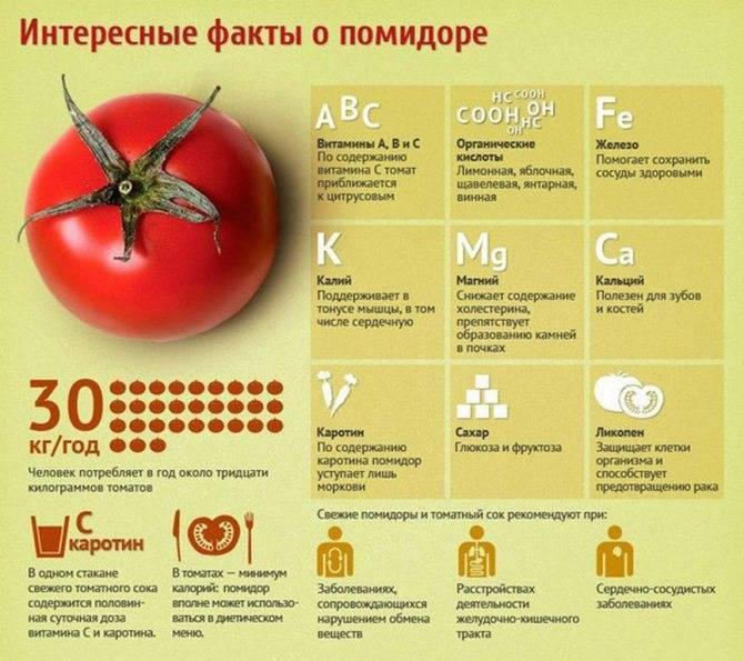 С какого возраста можно давать ребенку свежий огурец и помидор