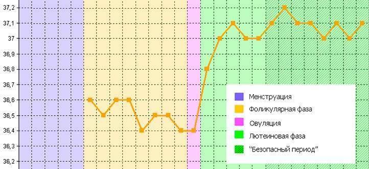 Определение беременности методом базальной температуры