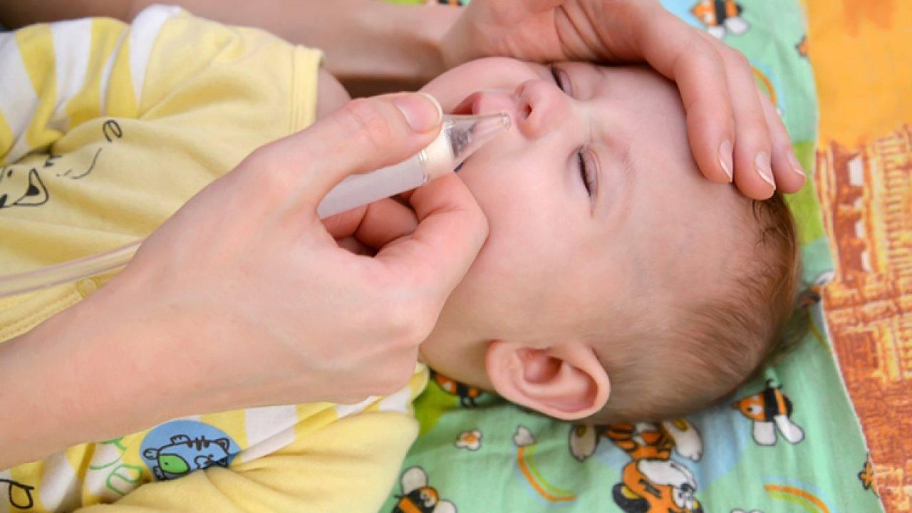 Алоэ от насморка ребенку: лечение и возможные реакции / mama66.ru