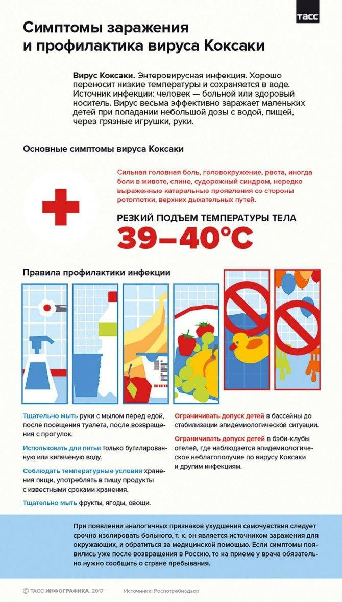 Коксаки вирус у детей – лечение, симптомы, сыпь, инкубационный