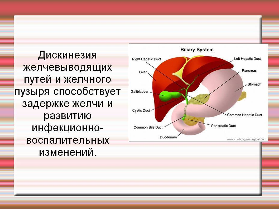 Дискинезия желчевыводящих путей у детей – симптомы и лечение