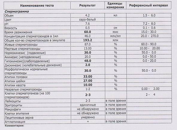 Значение лецитиновых зерен в спермограмме и какова их норма