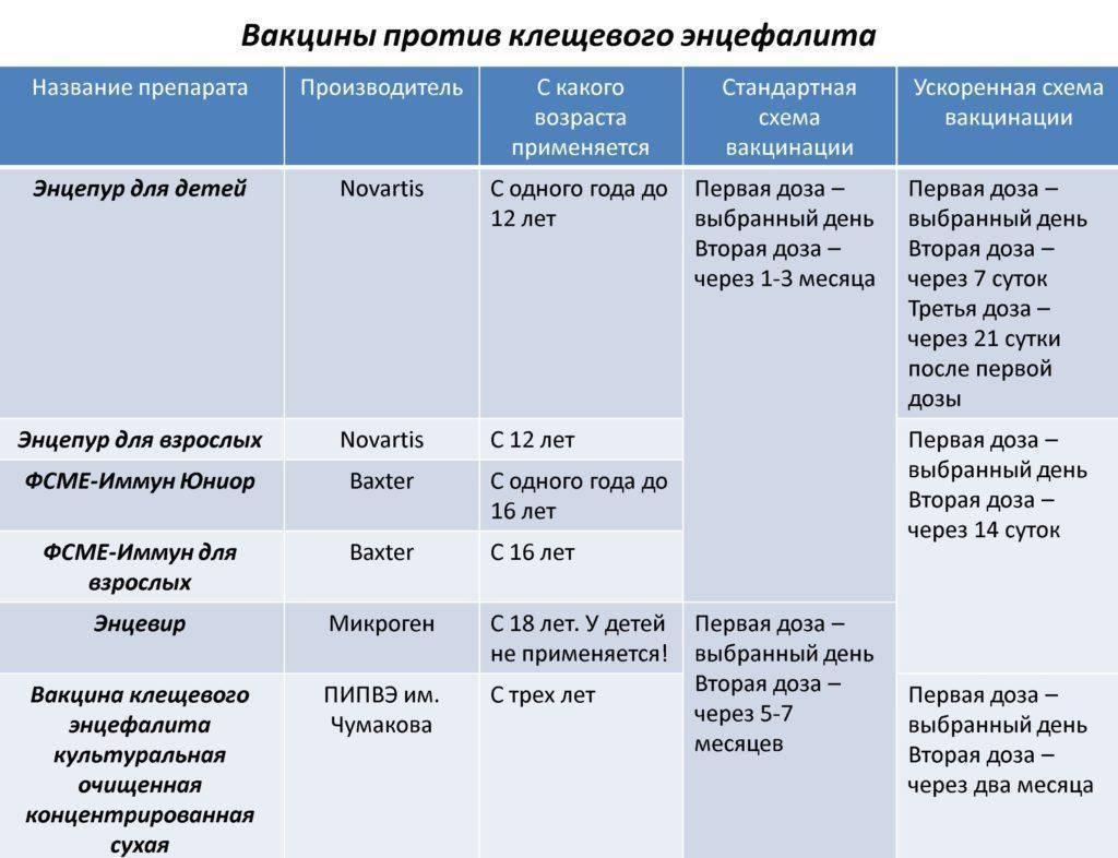 Прививка от клещевого энцефалита: схема вакцинации, противопоказания