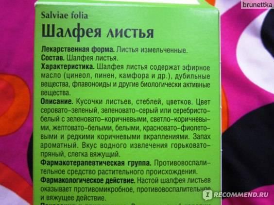 Шалфей для зачатия: насколько он эффективен / mama66.ru