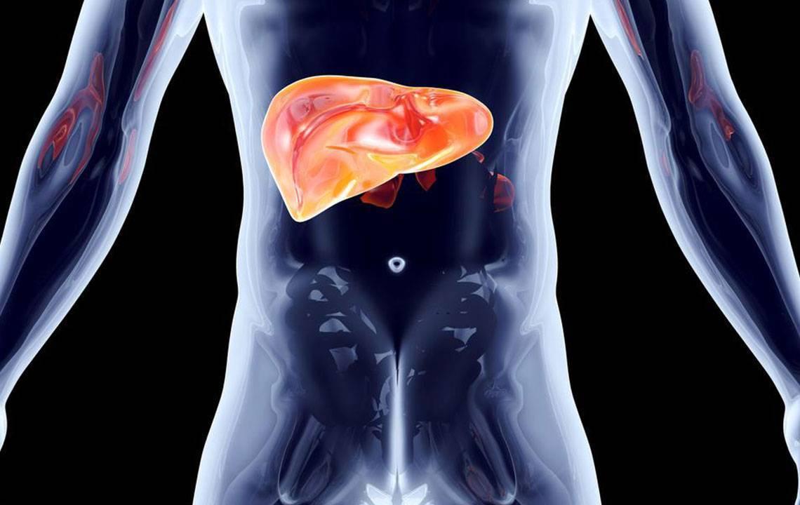 Лямблии в печени: симптомы, диагностика и лечение