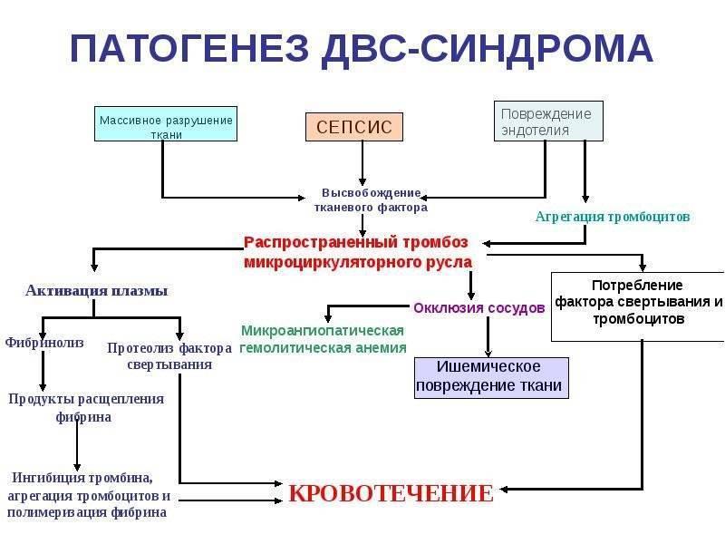 Какие бывают заболевания крови