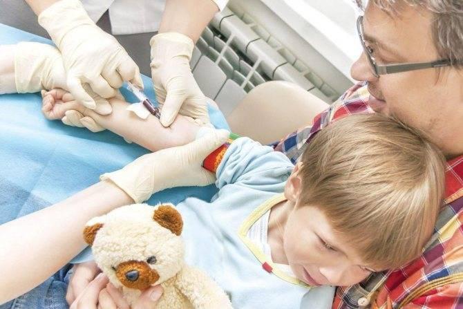 Как берут кровь из вены у ребенка и зачем это нужно у грудничов и новорожденных