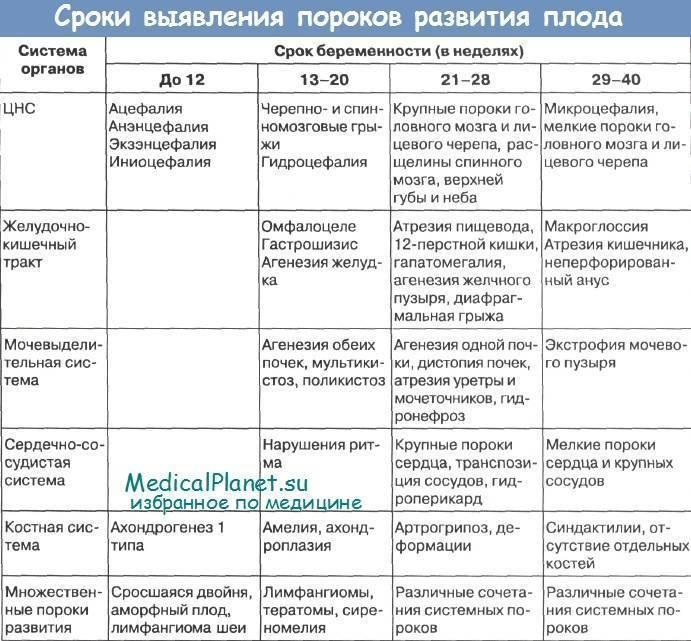 Генетические и хромосомные нарушения у плода: как выявить своевременно • центр гинекологии в санкт-петербурге