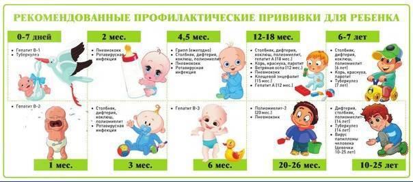 Можно ли купать ребенка после прививки бцж: рекомендации врачей