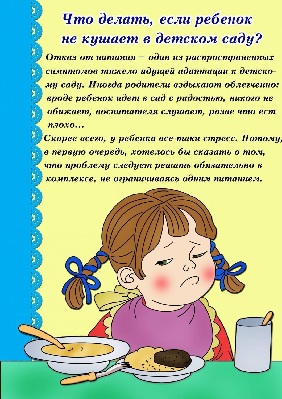 Почему ребёнок не кушает в детском саду?! | социальная сеть работников образования