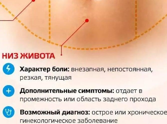 При менструации болят почки