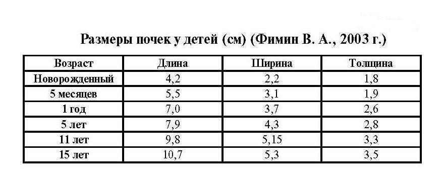 Нормы размеров печени по узи у детей: таблица с показателями по возрасту