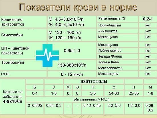 Анализ крови цветовой показатель ниже нормы - мое сердечко