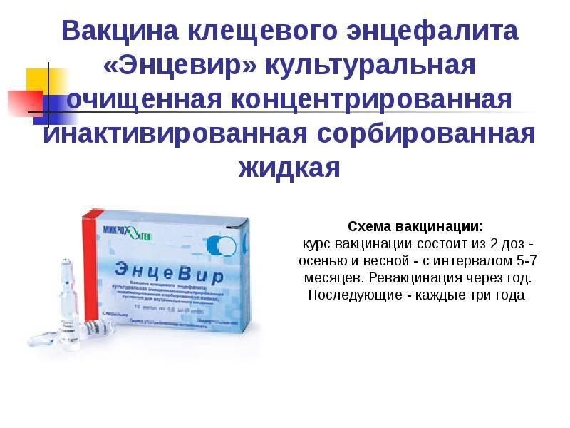 Прививка от клещевого энцефалита детям