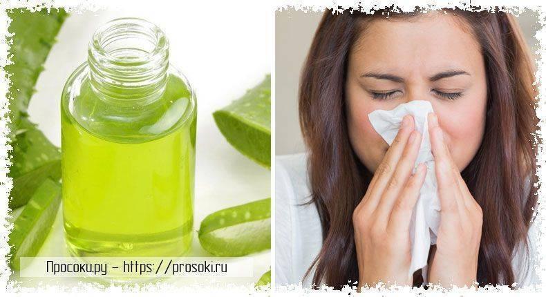 Алоэ в нос грудничку: можно ли капать сок растения при насморке новорожденным и детям до года, как часто это делать, также рецепты средств с медом, чесноком, маслом
