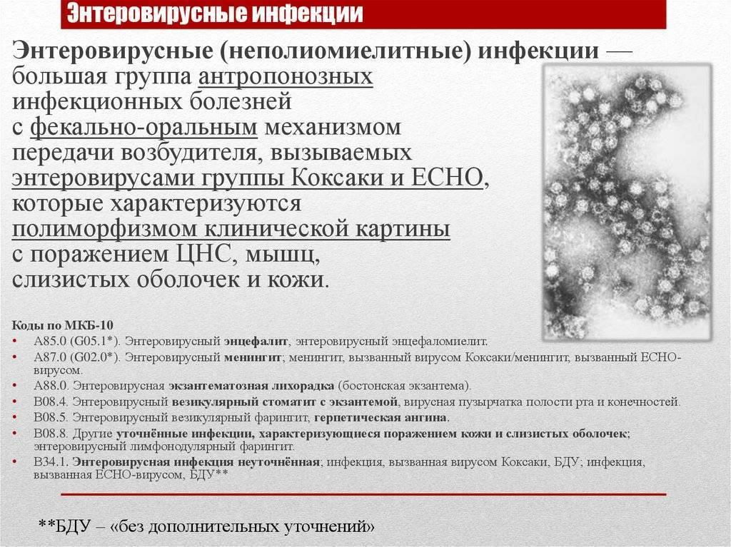 Сыпь при энтеровирусной инфекции у детей: фото, лечение