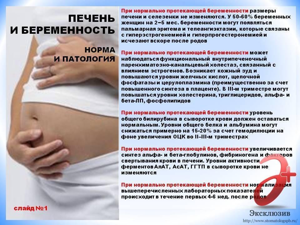 Линекс и беременность: чем помогут капсулы с бактериями?