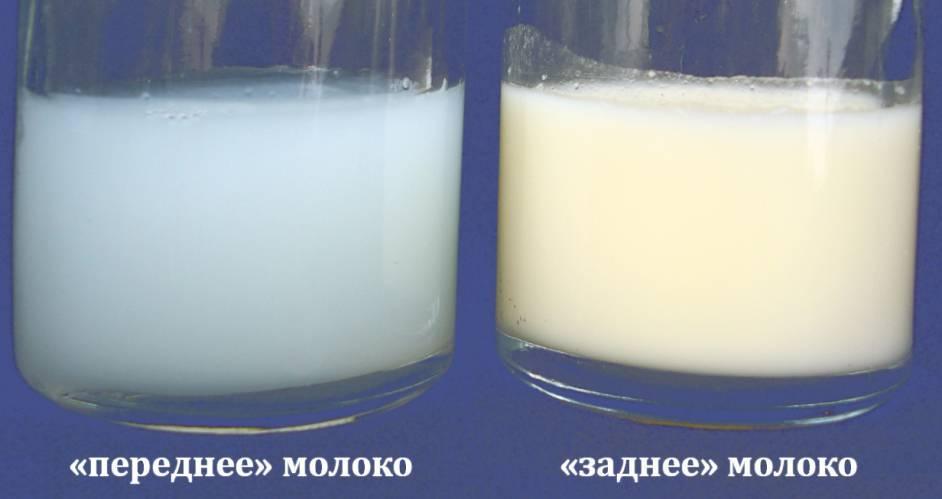 Грудное молоко стало соленым почему