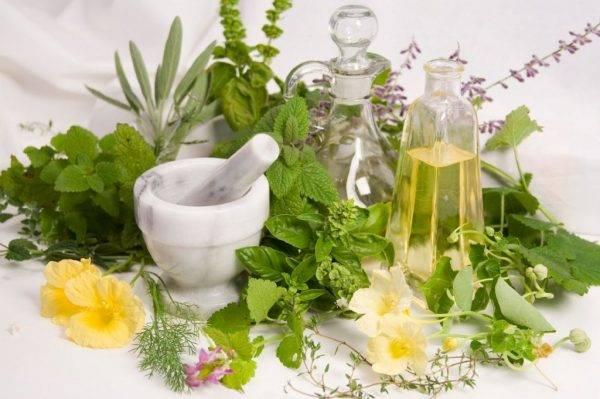 Лечение аллергии у детей народными средствами: отваром лаврового листа, крапивой и другими травами