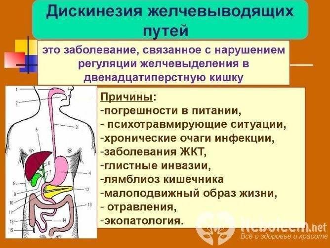 Гипомоторная дискинезия толстой кишки: причины, симптомы, лечение