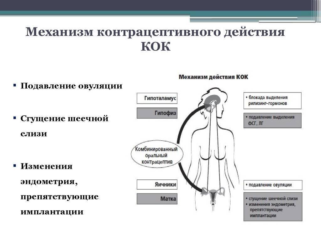 Контрацептивные губки - противозачаточное средство фарматекс и аналоги, инструкция по применению, отзывы